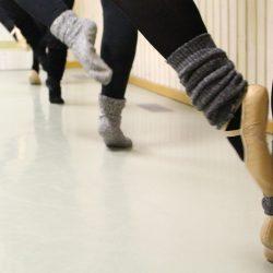 Ballettkurs für Erwachsene Fr.18:30 ab Januar