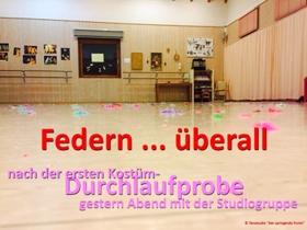 Bunte Federn auf dem Boden des Tanzsaales - erste Vorboten der Tanzshow